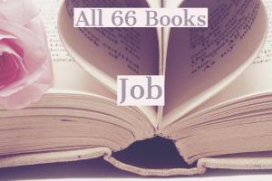 All 66 Books: Job