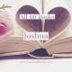 All 66 Books: Joshua
