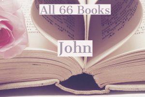 All 66 Books: John
