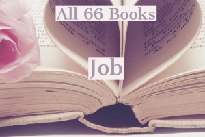 All 66 Books: Job