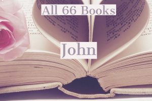 All 66 Books: John
