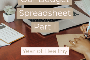 Our Monthly Budget Spreadsheet Part 1
