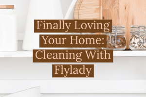 Finally Loving Your Home: Cleaning With FlyLady